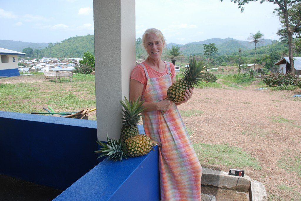 Pineapple from our garden - Free to anyone who wants to come and get it!